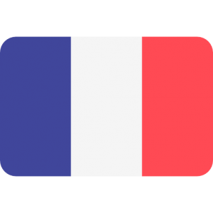 French translation - translation agency french - translator French